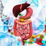 腸の不調・身体の不調はこうして始まる! 腸内環境と身体の症状の関係とは?(カンジダ症、リーキーガット症候群について)その2(2/4)